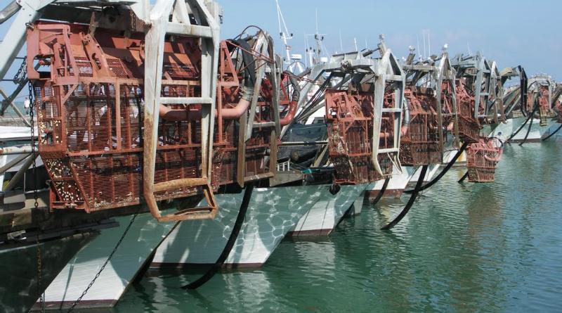 Pescherecci per la pesca delle vongole
