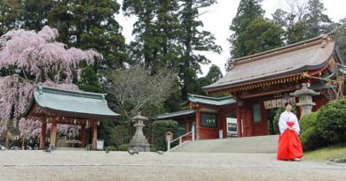 Uno scorcio della città giapponese di Shiogama