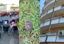 Emozioni e sorprese alla casa di riposo di Chioggia